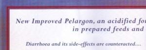 Nestle pelargon leaflet detail Botswana